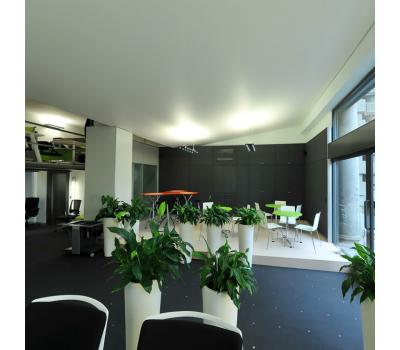 Натяжной потолок 36 м² Истра